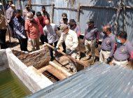 Penyulingan Minyak Ilegal di Dumai Berhasil Diungkap Oleh Ditreskrimsus Polda Riau